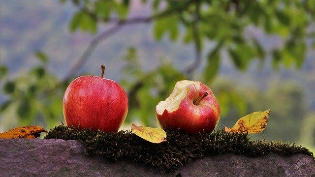 zdrowa eko dieta jesienią