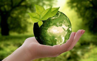 Jak uczyć dziecko być eko?