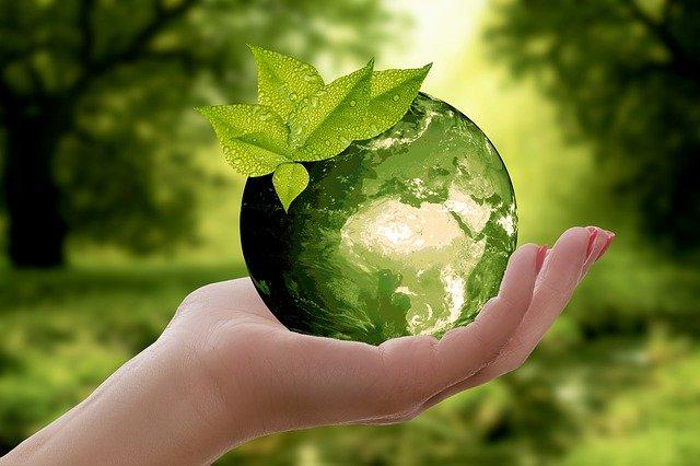 Jak być eko i jak uczyć dzieci bycia ekologicznym